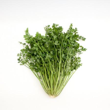 ФЕЛИЦИЯ (FELICIA) - семена петрушки листовой, Rijk Zwaan (GreenCultures/ЗеленныеКультуры)