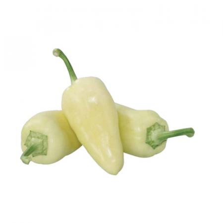 Хаски F1 (Haski F1) — семена перца, ENZA ZADEN