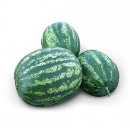 ЗЕНГО F1 (ZENGO F1) — семена арбуза, Lark Seeds