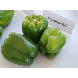 МАЗУРКА F1 (MAZURKA F1) - семена переца сладкого, Rijk Zwaan
