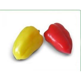 Яника F1 (Janika F1) — семена перца, KITANO SEEDS