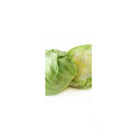 Лаура F1 (LAURA F1) — семена капусты, Agri Saaten