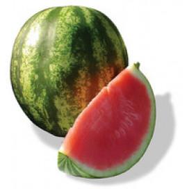 ЛОНЦИ F1 ( LONCI F1) — семена арбуза, Lark Seeds