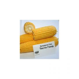 Тести Голд F1 — семена кукурузы, Agri Saaten