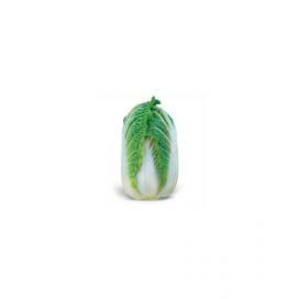 Зена F1 (Zena F1) — семена капусты, KITANO SEEDS